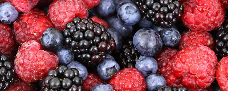 Frozen berry recall highlights potential supply chain risks in offshore production